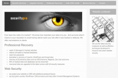 security_company_site_sample